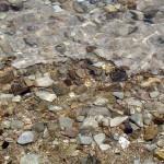 היווצרות ים המלח