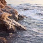 בוץ בים המלח