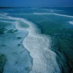 מזרימים חיים לים המלח